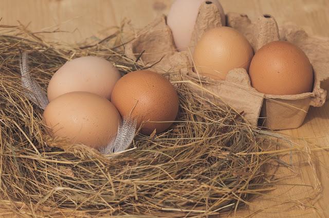 Sering Diremehkan Manusia, Ternyata Ini Manfaar Besar Dari Telur