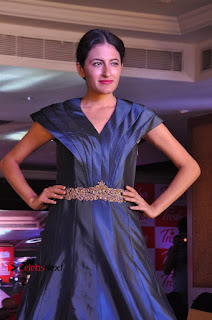 South Indian Celebrities Pos at Love For Handloom Collection Fashion Show  0079.jpg