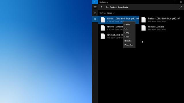 Uygulamanın arayüzü oldukça basit; ancak dikkat çekici şey, Windows 10X'te kullanılan temaya uyum sağlaması olsa gerek.