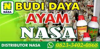 AGEN NASA DI Lut Tawar Aceh Tengah - TELF 082334020868