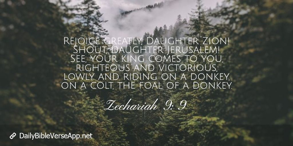 Rejoice greatly, Daughter Zion! Shout, Daughter Jerusalem! See, your king comes to you, righteous and victorious, lowly and riding on a donkey, on a colt, the foal of a donkey.