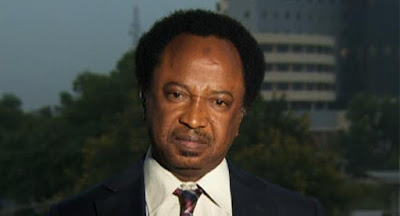 Expulsion threats is nothing but the hallucinations of a barely educated ogogoro drinker- Shehu Sani