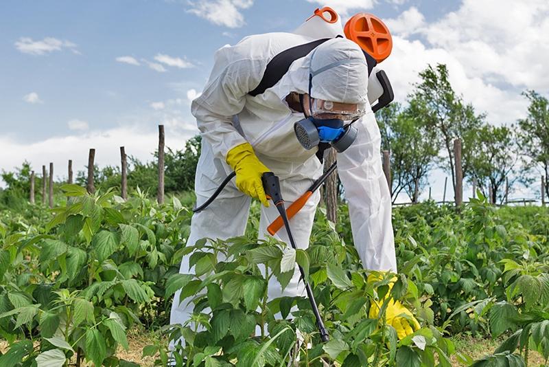 Tarım ilaçları ve hava kirliliği gebe kalma şansını azaltıyor
