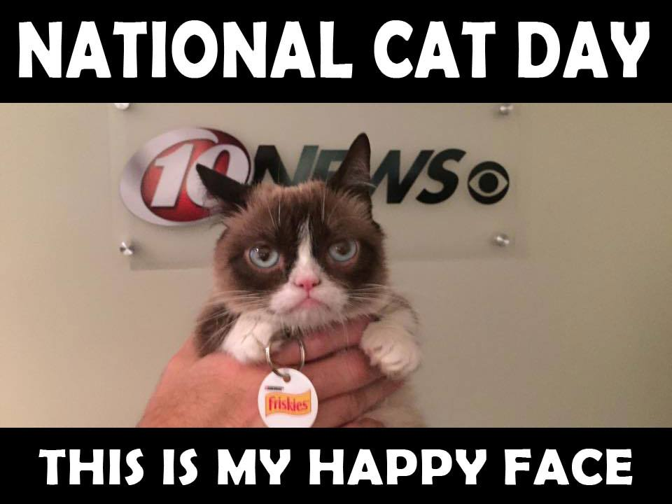 National Cat Day Wishes Photos
