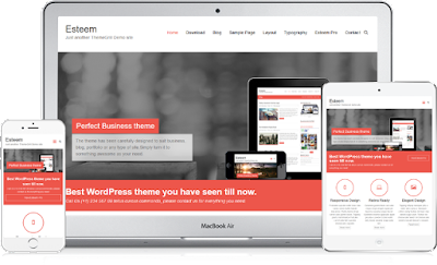 Best WordPress Themes for Agency or Organization Websites