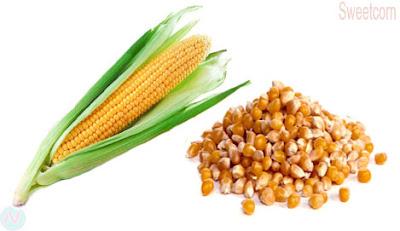 Sweetcorn, corn,ভূট্টা