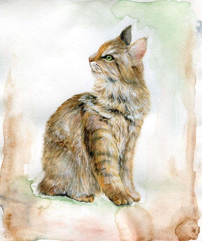 12-Inspired-By-Naturalists-Veselka-Velinova-Paintings-of-12-Cats-in-Different-Art-Styles-www-designstack-co