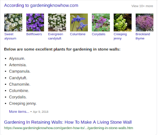 excellent plants for gardening in stone walls: according to gardeningknowhow.com Alyssum. Artemisia. Campanula. Candytuft. Chamomile. Columbine. Corydalis. Creeping Jenny.
