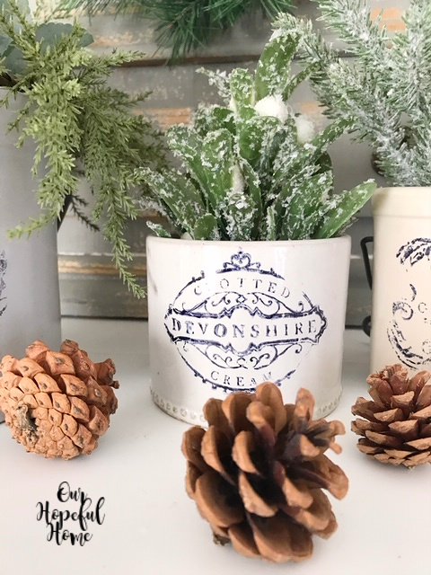 clotted devonshire cream crock pine cones