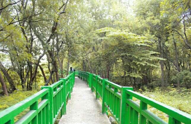 wisata mangrove jakarta