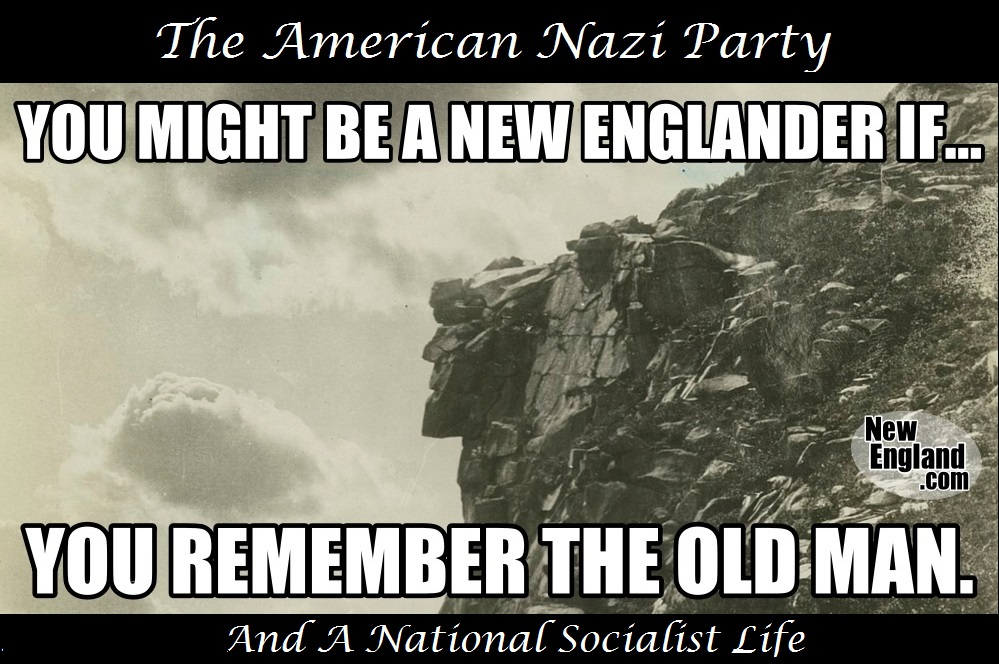 American Nazi Party And A National Socialist Life