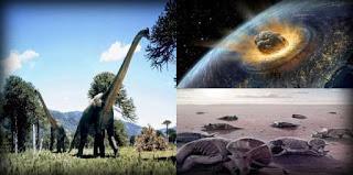 Pengertian, Contoh, Faktor Yang Mempengaruhi Seleksi Alam