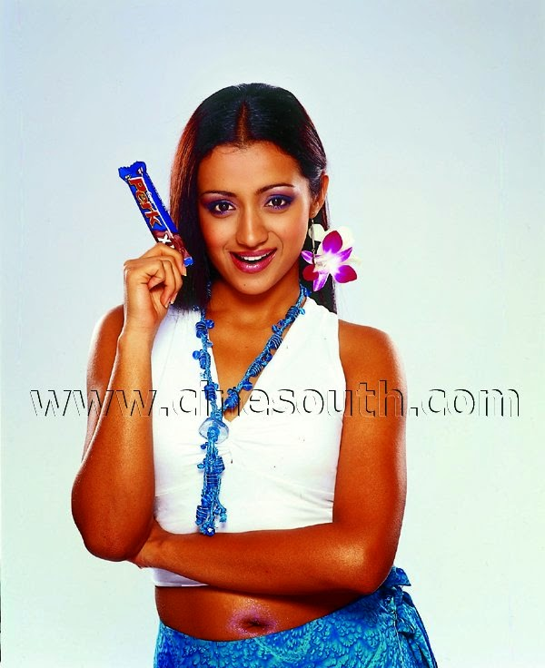 Indian Garam Masala: Trisha Sizzling Spicy Hot Cleavage