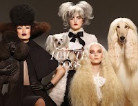 Haute Dog: Mac Cosmetics launches new dog-inspired collection