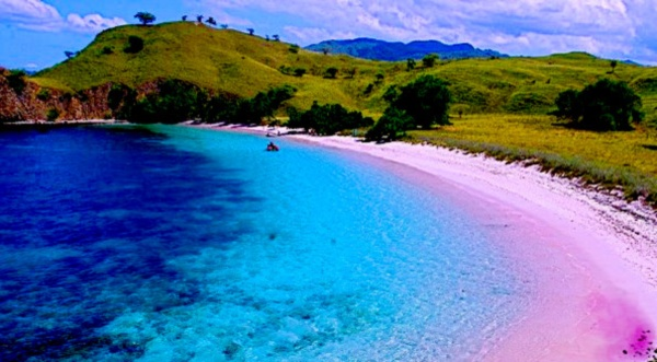 Liburan di Pantai Pink Lombok