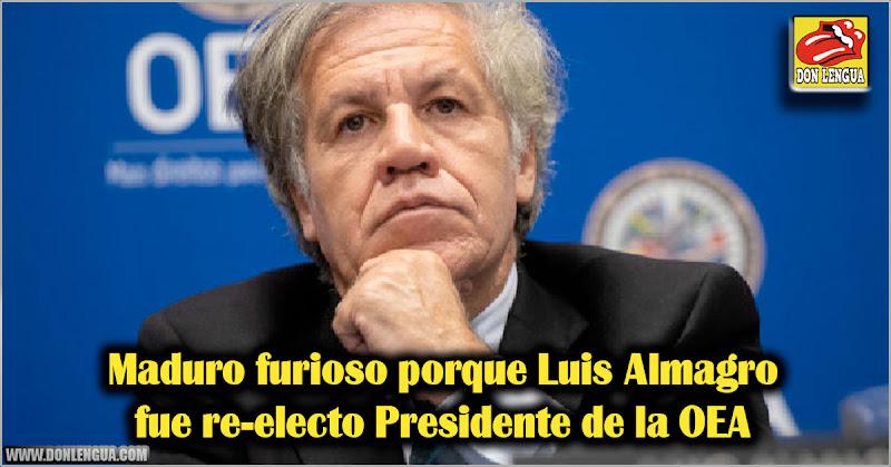 Maduro furioso porque Luis Almagro fue re-electo Presidente de la OEA
