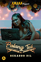 (18+) Palang Tod (Bekaboo Dil) Season 4 Hindi 720p HDRip