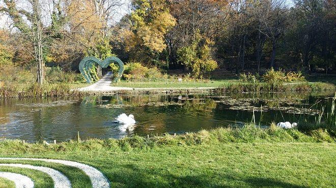 gradina-botanica-lac