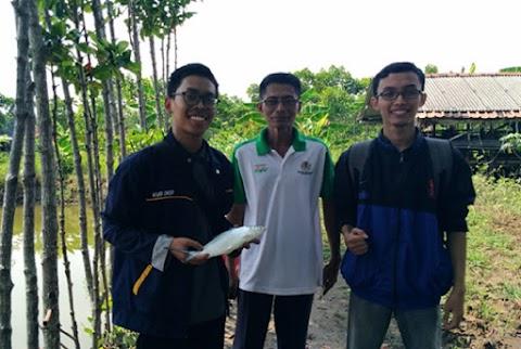Gunakan Asap Cair, Mahasiswa UNDIP Berhasil Mereduksi Kadar Logam Berat Ikan Bandeng