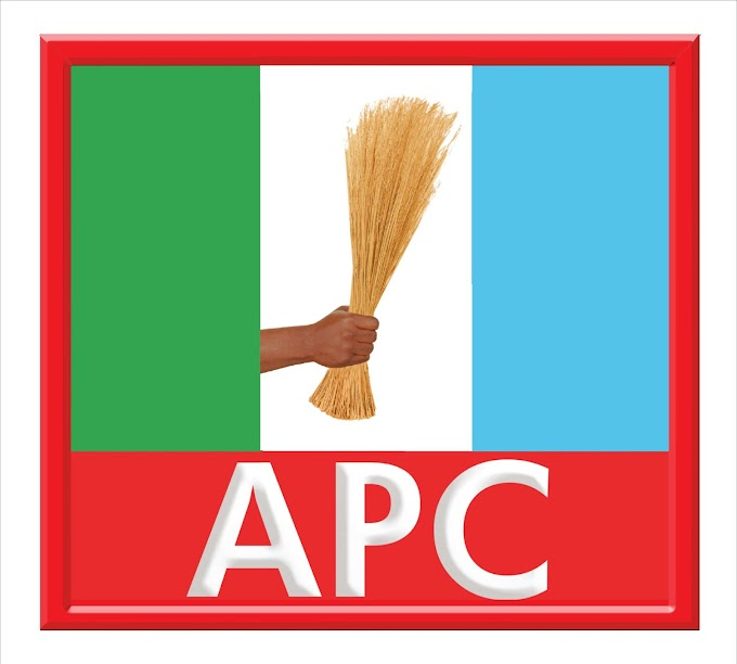 2023 presidential election: We'll pick consensus candidate – APC