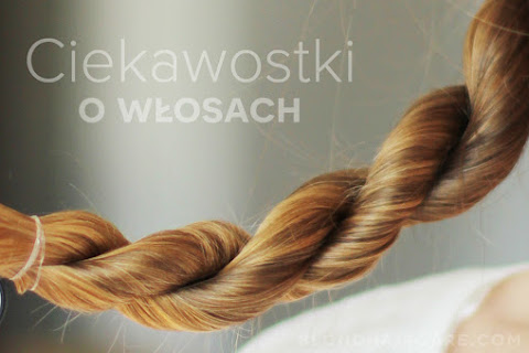 Ciekawostki o włosach - 20 ciekawostek na temat włosów - czytaj dalej »