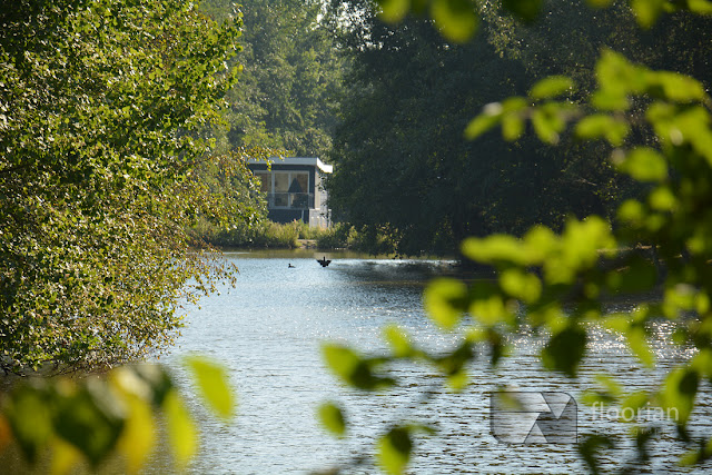 Center Parcs Bispinger Heide w Dolnej Saksonii - przyroda Dolnej Saksonii