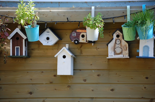 How to Create a Homemade Bird House