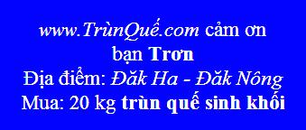 Trùn quế Đắk Ha- Đăk Nông