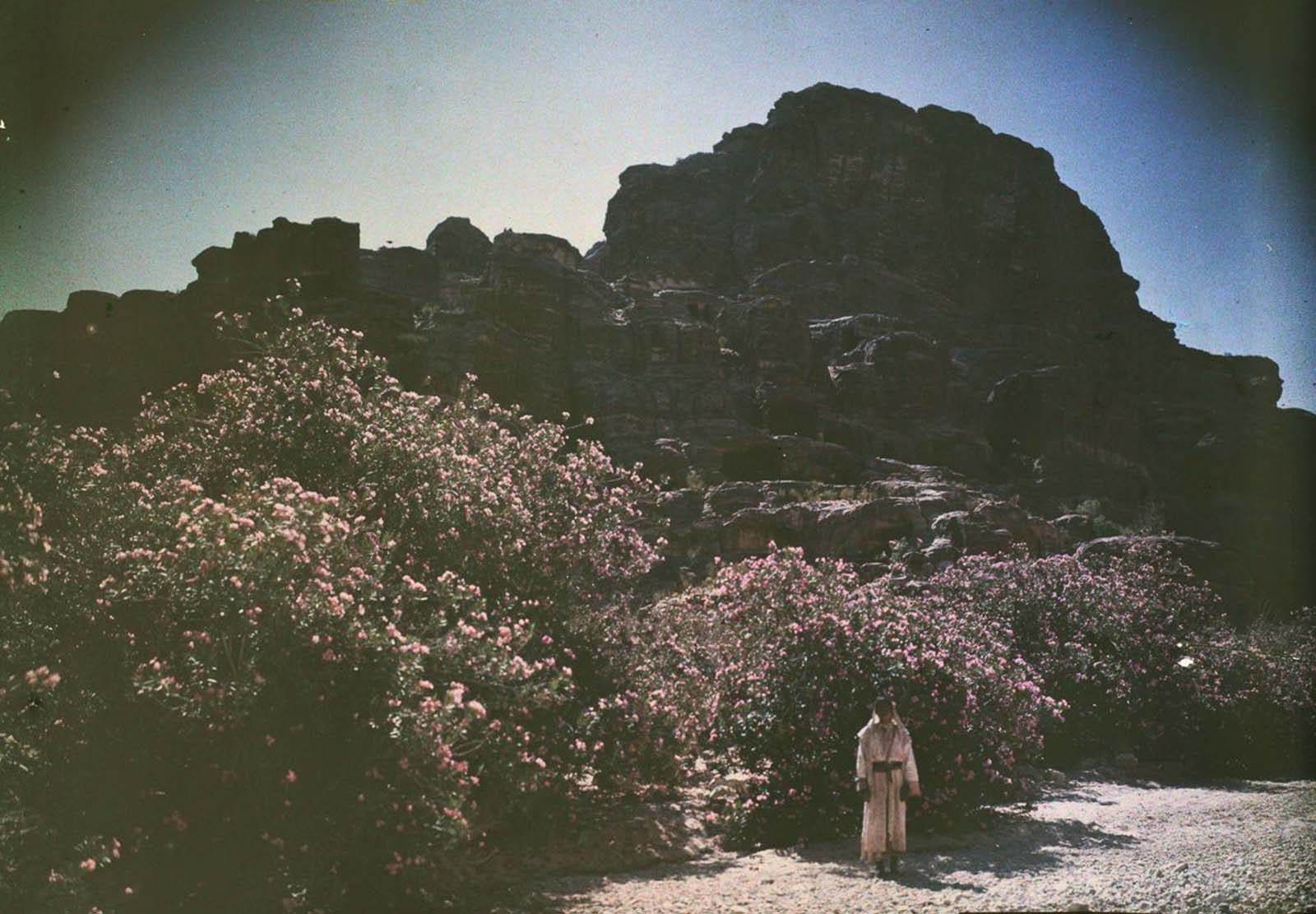 Petra Old Color Images