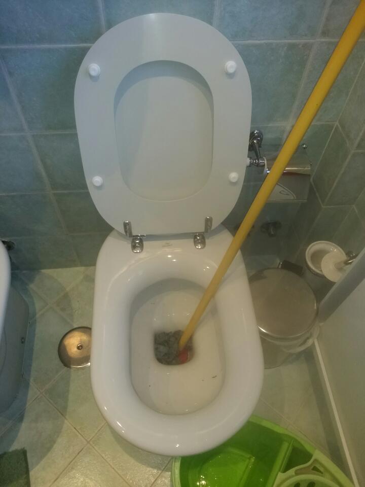 differently 5f78a c310f I consigli del Sandrone: Come scrostare un water / sanitario ...