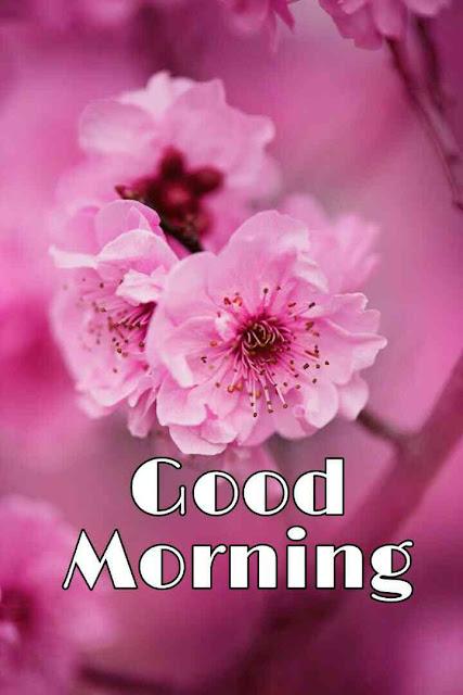 good morning ka photos hd