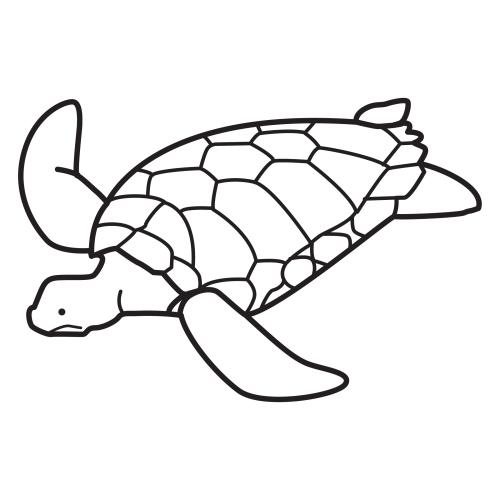 RECURSOS Y ACTIVIDADES Para Educación Infantil: Dibujos