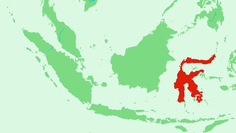 Proses terbentuknya pulau sulawesi