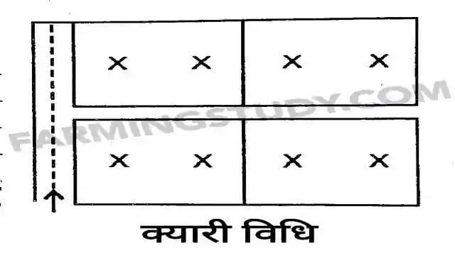 सिंचाई किसे कहते हैं, सिंचाई की परिभाषा, irrigation in hindi, methods of irrigation in hindi, सिंचाई की प्रमुख विधियां, सिंचाई के प्रकार, farmingstudy