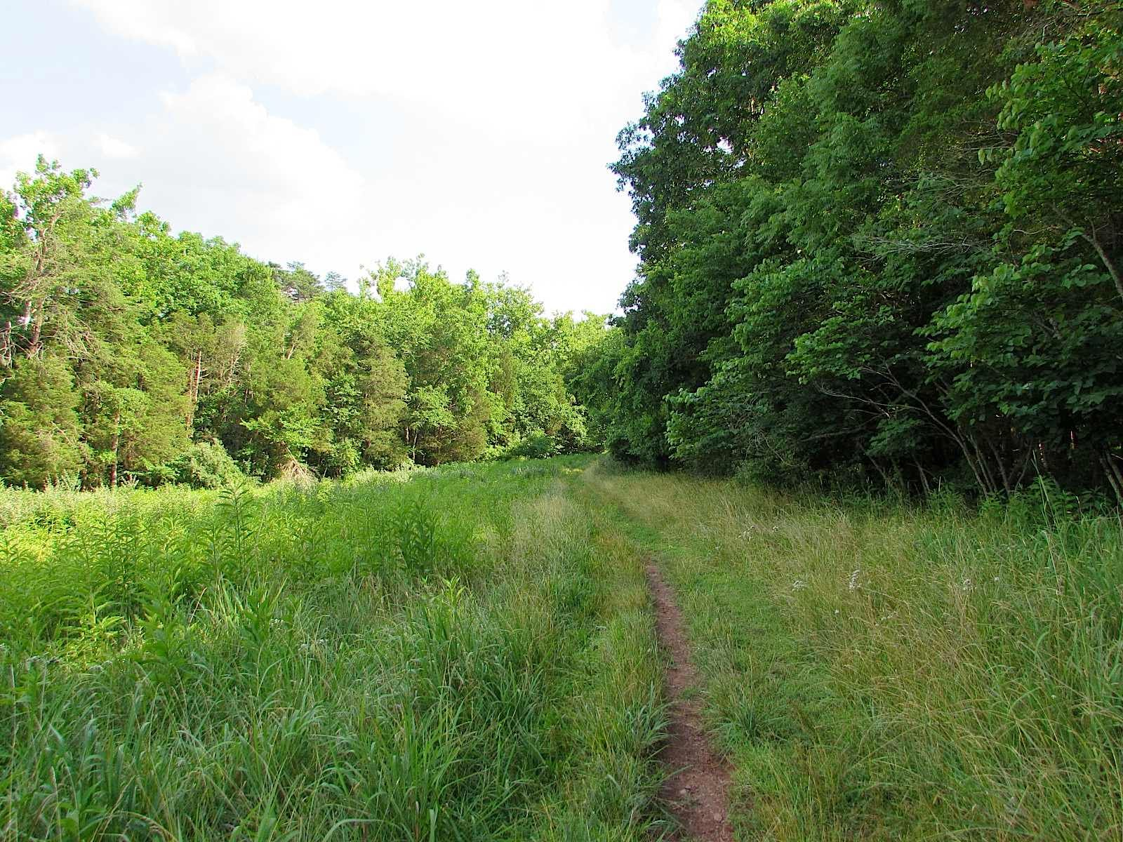 facebook trail jouy