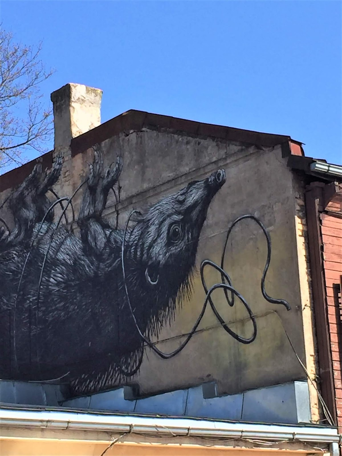 Murale di Roa