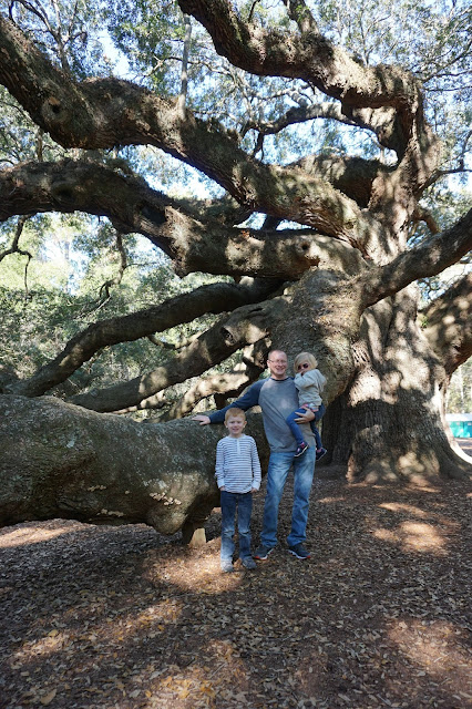 Angel Oak Tree with the Family