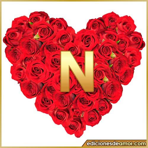 corazón de rosas con letra N