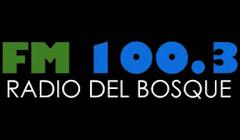 Radio del Bosque 100.3 FM