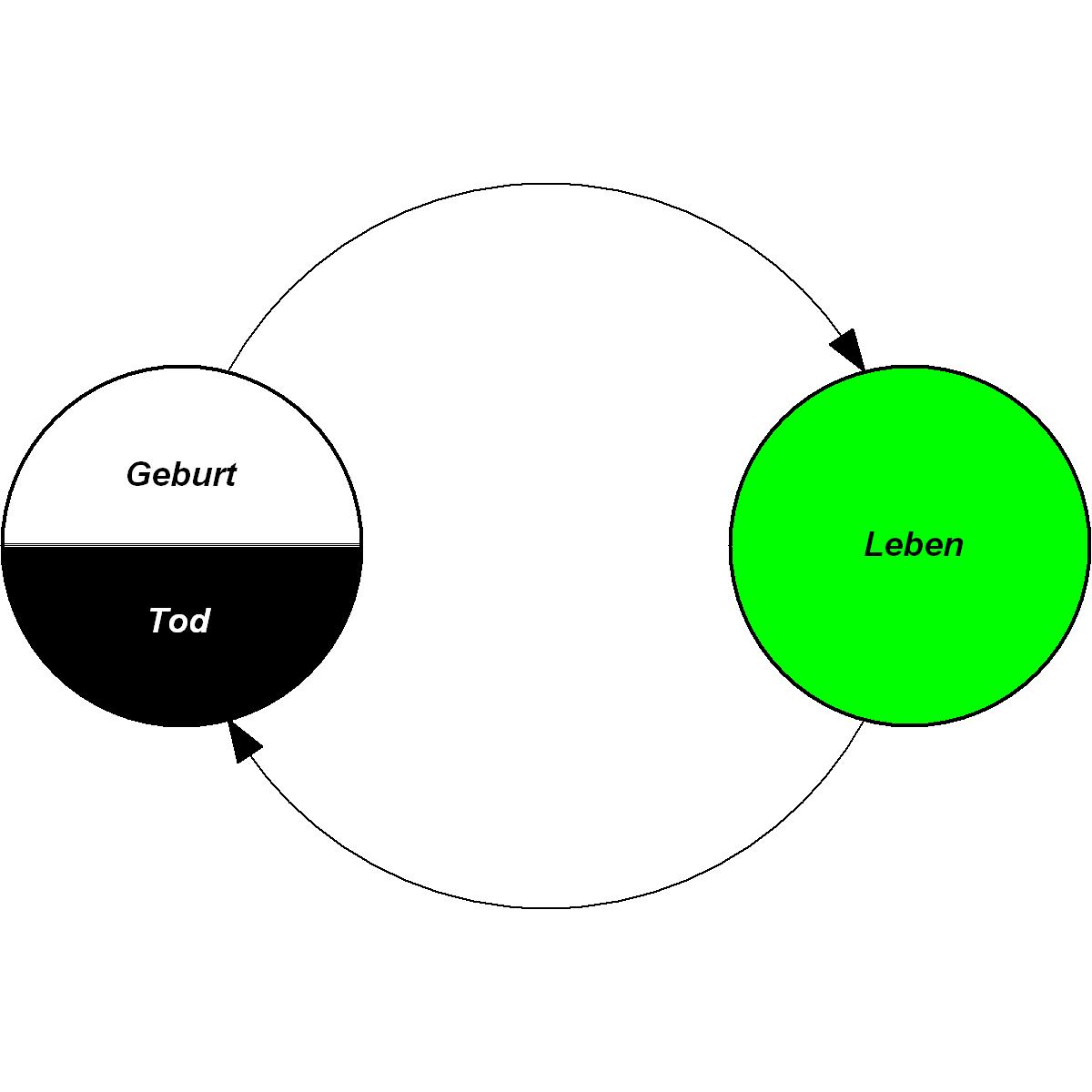 Kreislauf Des Lebens