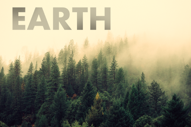 image of trees on a hill with the word earth written on it.