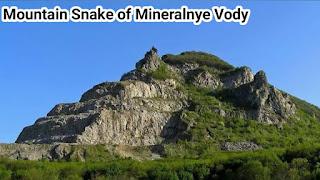 Mountain Snake of Mineralnye Vody