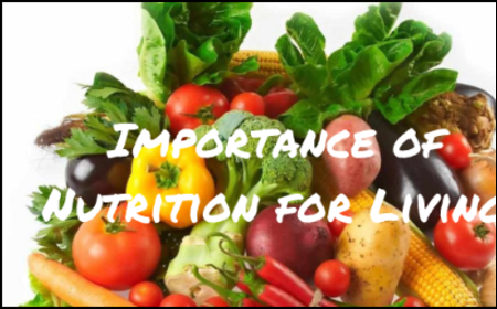 Importance of Nutrition for Living
