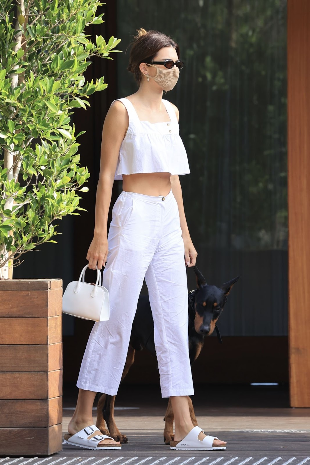 Kendall Jenner shows off her taut tummy in a white crop top while dining with friends in Malibu before driving everyone in her classic Cadillac
