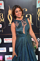 Shriya Saran in Beautiful Transparent Dark Gown IIFA Utsavam Awards 2017 030.JPG