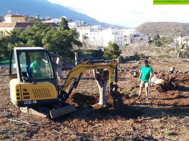 El Ayuntamiento de Los Llanos de Aridane ampliará los huertos municipales