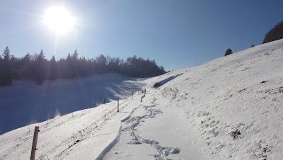 Winterlandschaft bei Bützen, 1224 m