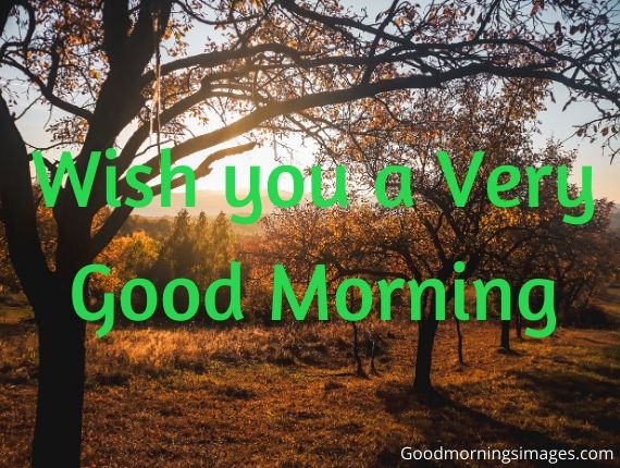 Good morning images for whatsapp with quotes free download