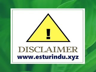 disclaimer - www.esturindu.xyz