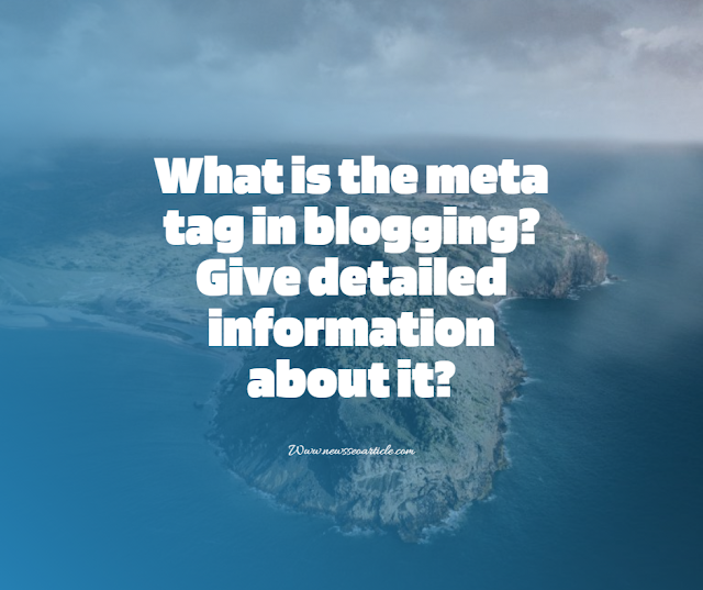 What is the meta tag in blogging? Give detailed information about it?